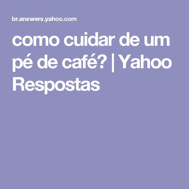como cuidar de um pé de café? | Yahoo Respostas