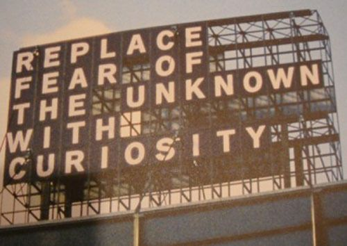 Curioiusity: Cat, Remember This, Inspiration, Wisdom, Replacements Fear, Unknown, Living, Travel Quotes, Good Advice