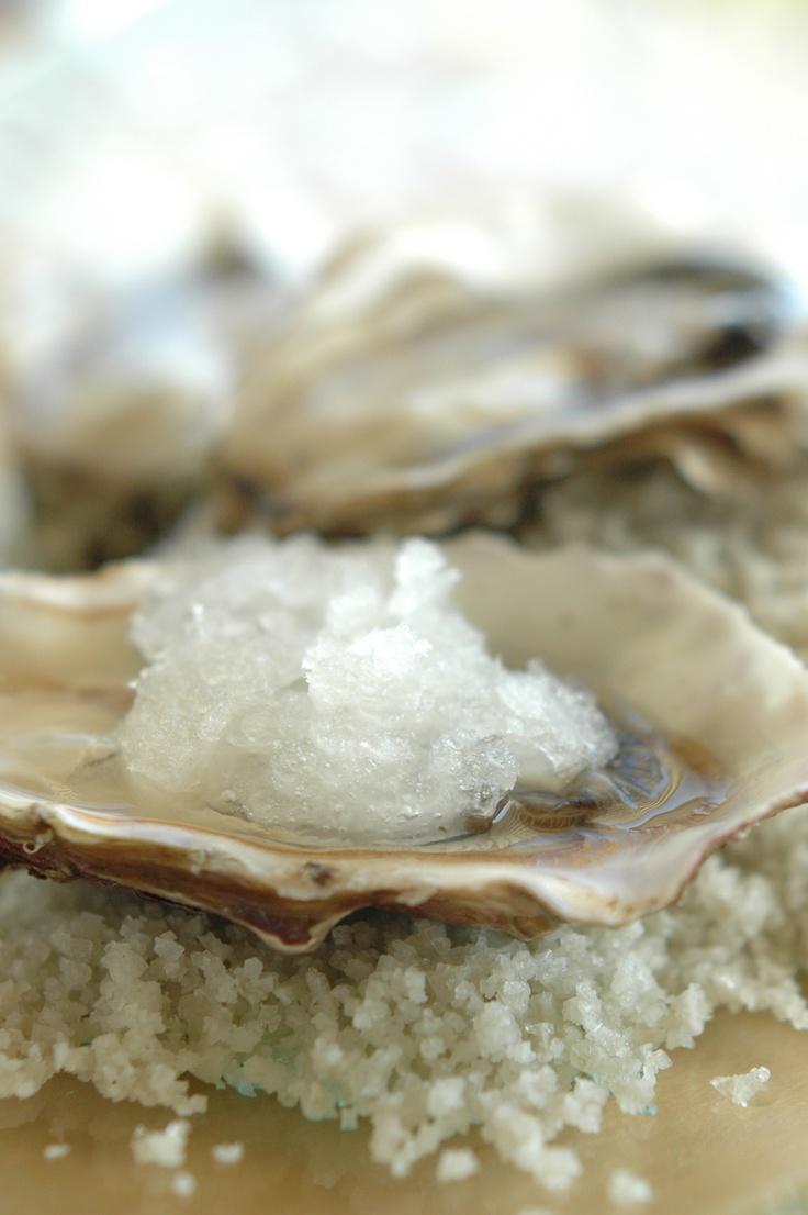 Huîtres et granité de Muscadet  www.oesterkoning.nl   De oesterkoning opent oesters op uw feest. Oesters € 2,10   guido@oesterkoning.nl   0031(0)644538529