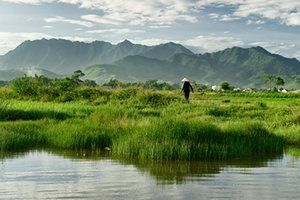Lush Tam Giang, Vietnam. The mountains rise up behind Tam Giang lagoon, Phú Loc, in Thua Thiên–Hue Province. While I love stunning scenery, the human element of a place is what really draws me to locations.