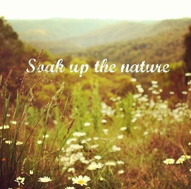 Soak up the Nature >>--->