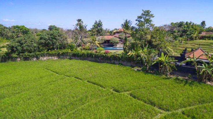 Villa East Indies | 5 bedrooms | Canggu, Bali #ricefield #view #bali #villa
