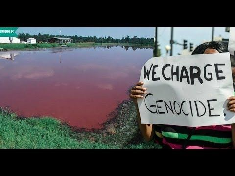 North Carolina Hog Farms Spray Manure Around Black Communities
