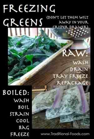 Freezing Greens @ Traditional-Foods.com