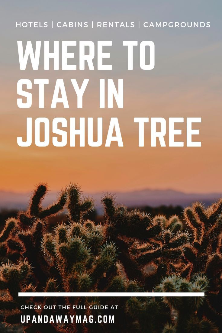 Where To Stay In Joshua Tree 25 Best Hotels Cabins