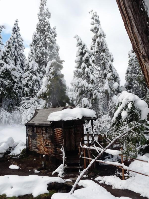 "Planning A Road Trip >> The geothermal ""Steam Sauna"" Breitenbush Hot Springs, Oregon Cascades. | Oregon or Bust ..."
