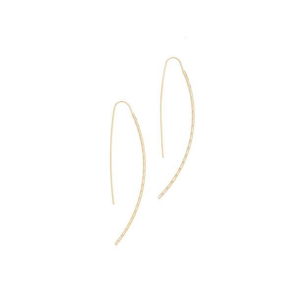 Cloverpost Ticker Earrings ($36) ❤ liked on Polyvore featuring jewelry, earrings, 14k jewelry, 14k gold plated jewelry, long earrings, hammered earrings and gold plated jewelry
