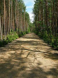 John Demjanjuk - Wikipedia, the free encyclopedia  Leading to death camp. Dark Places, Kathleen