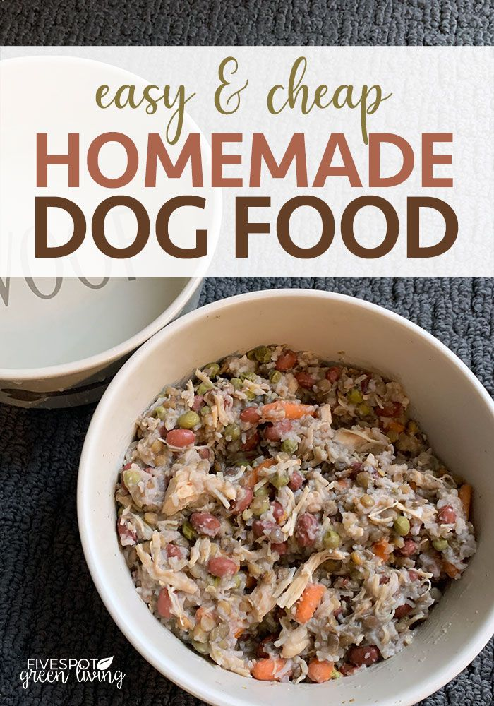 Homemade Breakfast For Dogs Recipe Dog Food Recipes Homemade
