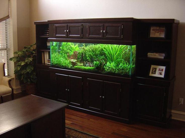 180 gallon aquarium stand plans woodworking projects plans for 180 gallon fish tank