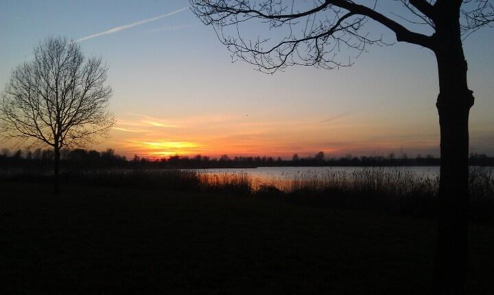 Zonsondergang in het Bossche Broek 4/3/13