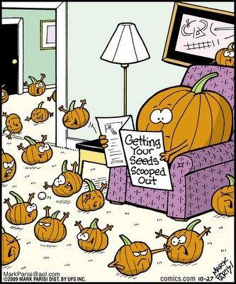 halloween humor | Pumpkin Halloween Humor (LOL) | Halloween*Haunted*Creepy*Spooky
