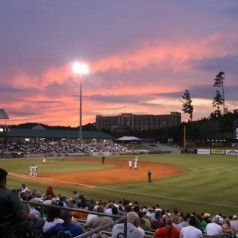25 best minor league baseball logos stadiums images on pinterest tennessee smokies baseball one of the most fun things you could be doing in sevierville malvernweather Gallery