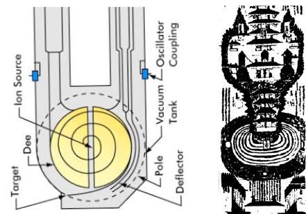 A cyclotron consisted of two large dipole magnets designed to produce a semi-circular region of uniform magnetic field, pointing uniformly downward