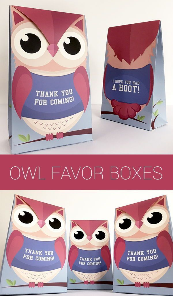 Woodland Baby Shower Favor Boxes Owl Baby Shower Favor Bags