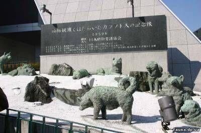 Памятник ездовым собакам,оставленным на японской антарктической станции Сёва_Токио  Оставленным в Антарктиде  В июле 1958 года в парке Сиба, в Токио, у подножия телевизионной башни состоялось торжественное открытие памятника ездовым собакам,оставленным на японской антарктической станции Сёва.