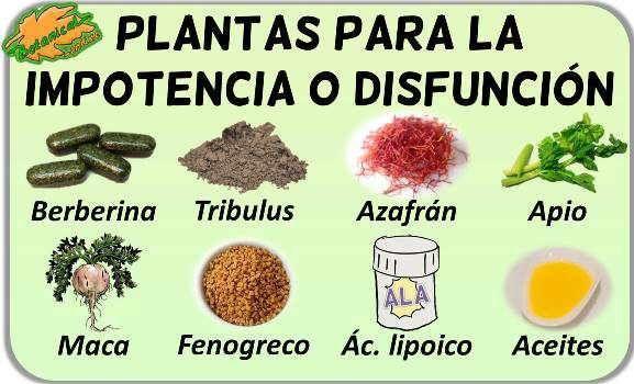 Todas las curas naturales para la disfunción eréctil.