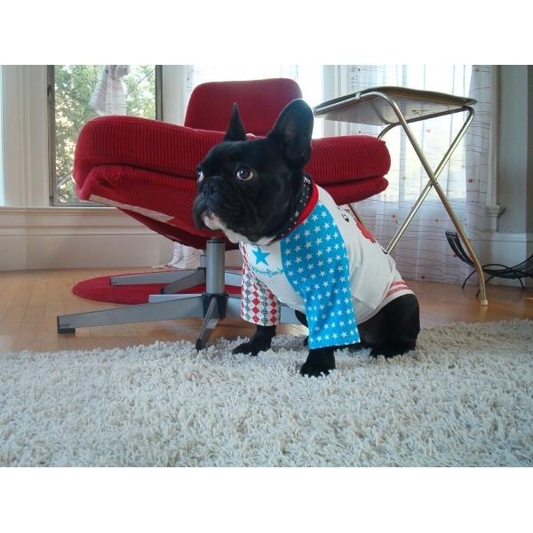 Camiseta para Perro Circus Clown - KUKA´S WORLD - Ropa y Accesorios exclusivos para Perros. Moda Canina de Diseño y Artículos para Mascotas con estilo. Designer Dog Clothes and Luxury Accessories for Pets! http://www.kukasworld.com/