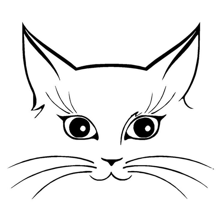 You'll say OMG when you see this Cute Cat Face Vin