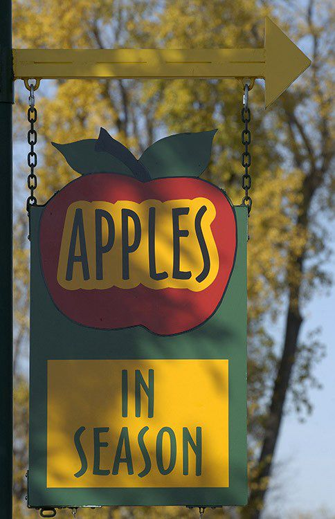 #Orchards. #Cheese factories. #Gardens. Food fans can find plenty of #agritourism attractions along the Great River Road, from the Mill City Museum in #Minneapolis, #Minnesota, to historic #plantations in #Louisiana.