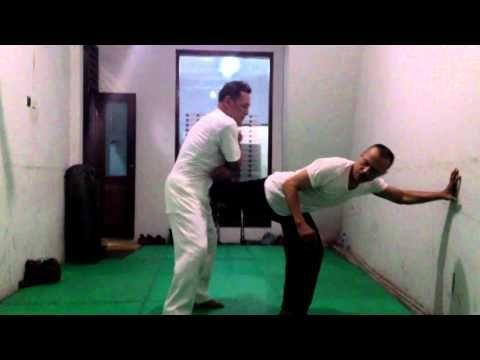 Pencak Silat: Defending from a kick through a leg lock
