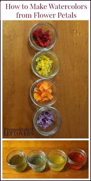 How make watercolor paints from flower petals - Fun (and frugal) activity to do with kids this summer.