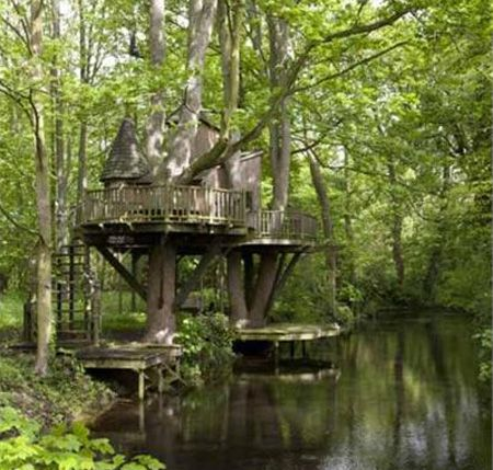 Future Tree Houses 11 best future tree home images on pinterest | treehouses