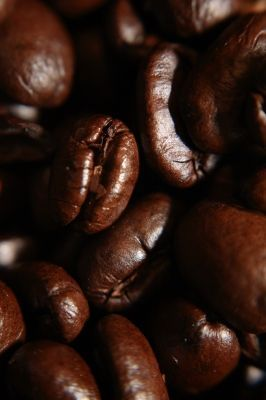 A Glimpse Into the World of Coffee Roasting