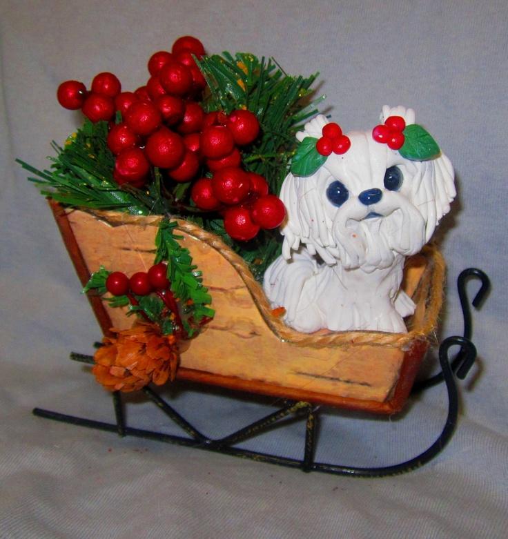 Christmas Maltese