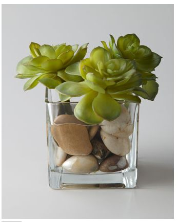Simple flower arrangementDecor, Diy Gift, Rocky Succulents, Faux Greenery, Succulents Faux, Flower Arrangements, Collection Rocky, Gardens, Faux Succulents
