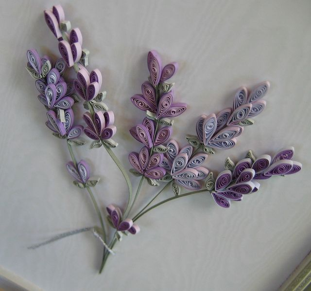 490 best images about lavender the herb on pinterest - Paper quilling art wallpapers ...