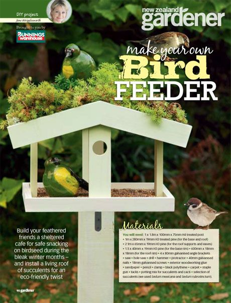 Make Your Own Window Bird Feeder Woodworking Projects