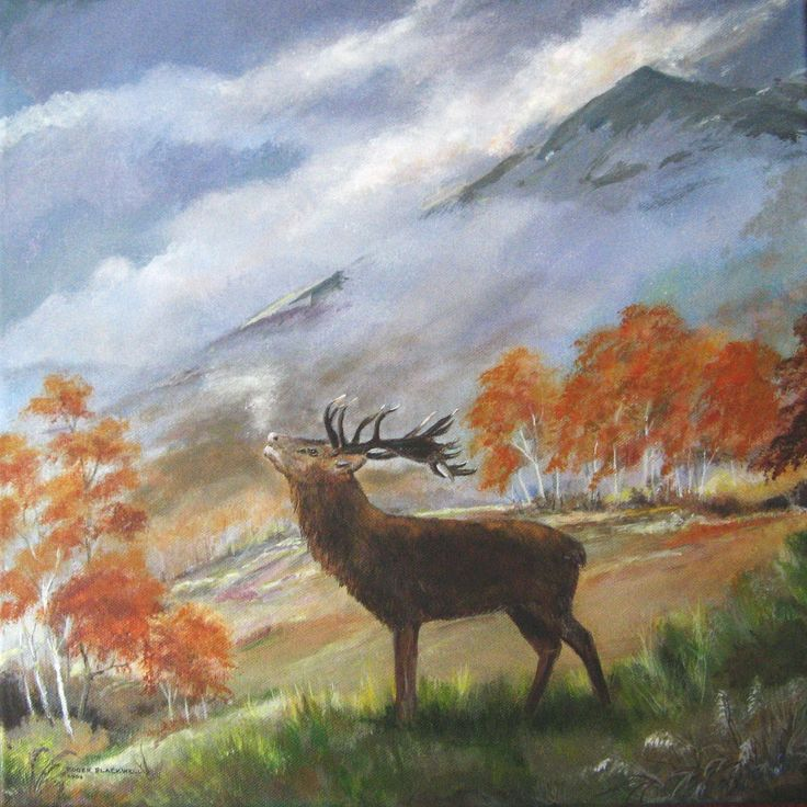 Stag                                           Acrylic on canvas