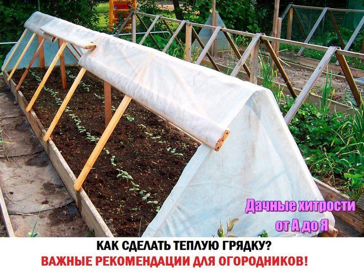 http://ok.ru/group/54391308156930  ТЕПЛЫЕ ГРЯДКИ  Друзья! Делайте тёплые грядки осенью. Это самое лучшее время — органики много, времени свободного много! Странно, но осенью можно получить такое удовольствие от Земледелия, которое не получишь ни весной, ни , делая, кажется, одну и ту же работу.  Тёплые грядки помогают получить высокий урожай томатов, огурцов, перцев и баклажанов в наилучшем вкусовом исполнении.  Суть проста. Создаются короба или траншеи высотой или глубиной 40-50 см, шириной…