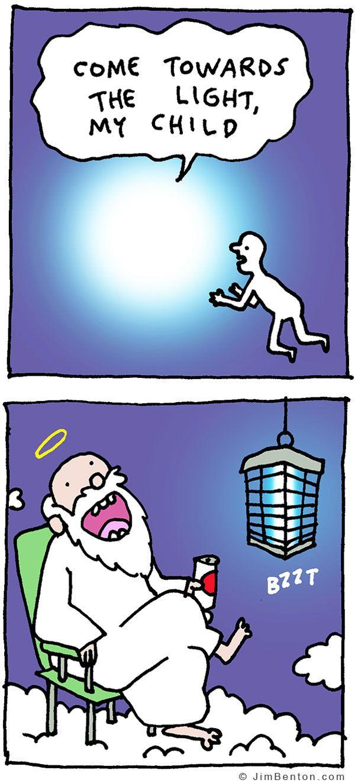 Funny Pictures December 31, 2016 Dark humor jokes