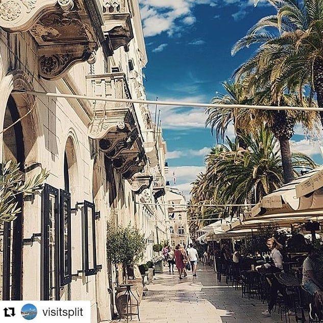 #Repost @visitsplit (@get_repost)  palm trees  riva  sun  and maybe a cup of  Perfect!  .  by @lindabjorkli  #visitsplit #croatia #croatiafulloflife #centraldalmatia #vacation #travelgram #instatravel #vitaminsea #tlpicks #lovethiscity #travelblogger #travelphotography #travelholic #citybreak