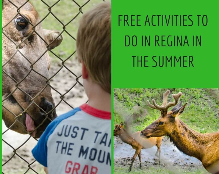 6 Free Activities to Do in Regina in the Summer