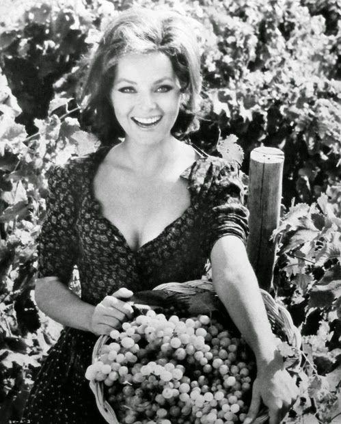 Katynabio: Virna Lisi: un'attrice bella e brava, naturalmente...