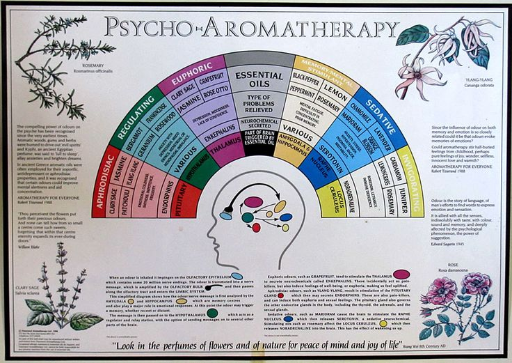 Tisserand's psychoaromatherapy chart How natural raw materials are different? Part three of three: 3) perfumetherapy, healing emotionsTwenty-five years ago Robert Tisserand expounded the fruits of his research on how our sense of smell could be triggered to activate the release of neurochemical hormones (neurohormones). ...