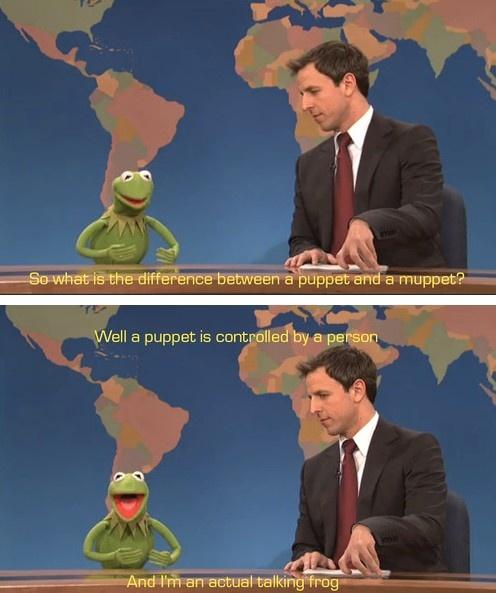 Muppet Christmas Meme: 97 Best Images About Kermit On Pinterest