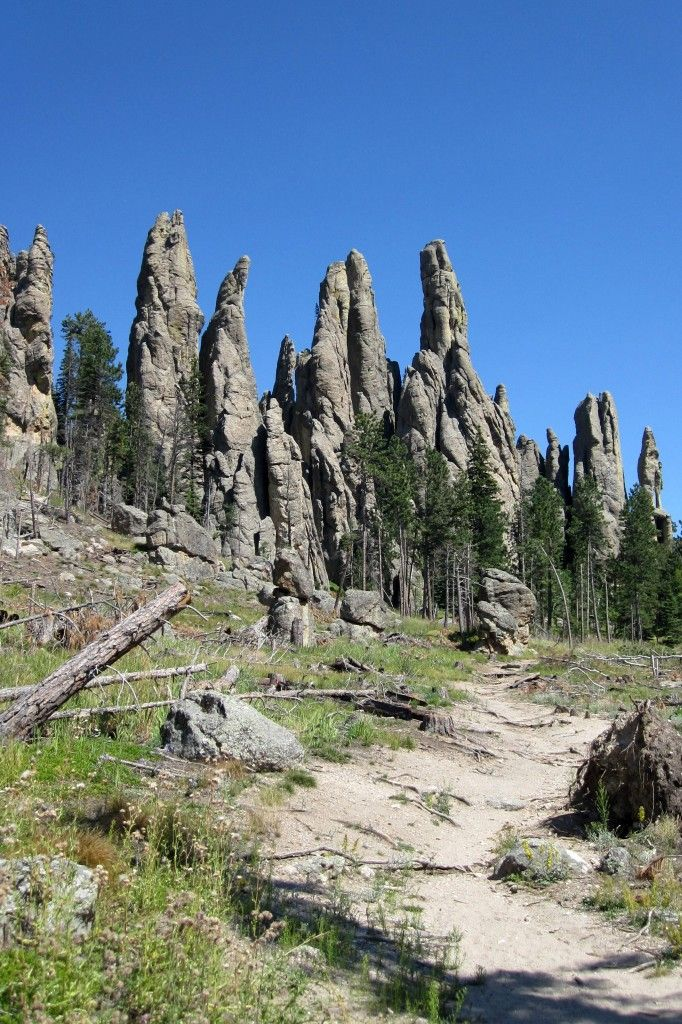 Needles along Cathedral Spires, Custer State Park, South Dakota,   (Photo by Hillary Dobbs-Davis)