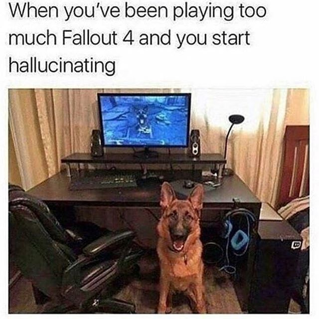 *replaces dogmeat with danse*