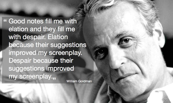 William Goldman discussing script notes in 'Adventures in the Screentrade', published 1983