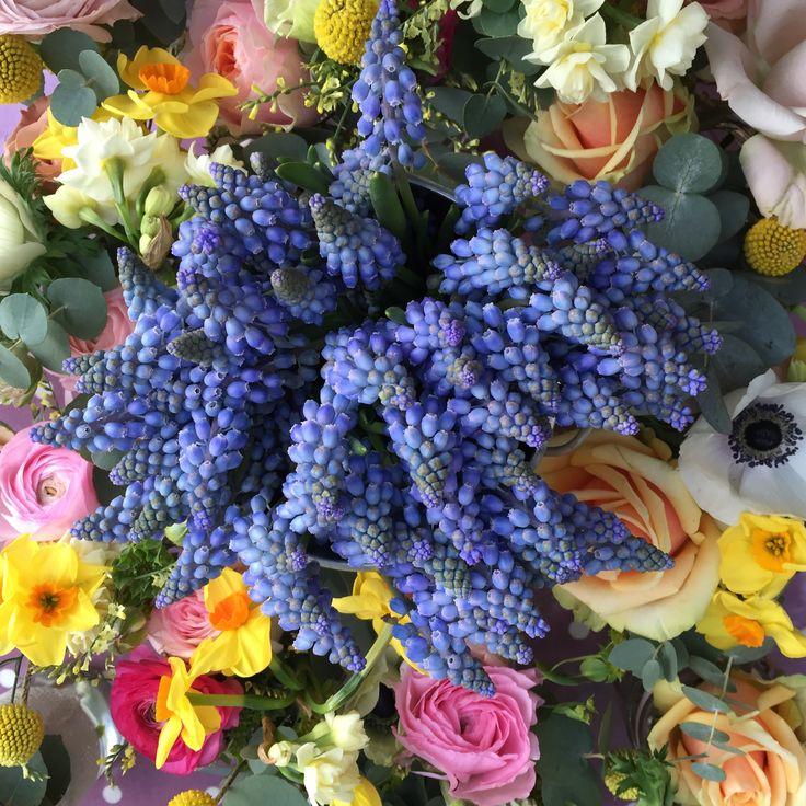 Moreish Muscari  www.theenchantedflower.co.uk
