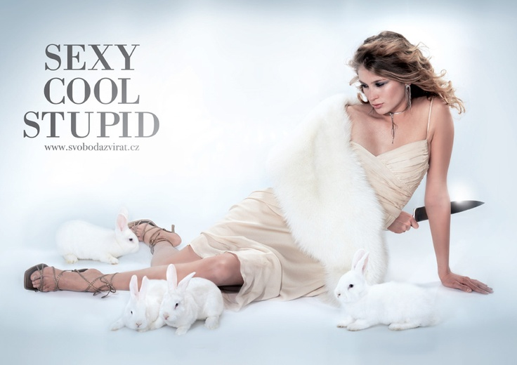 Sexy Cool Stupid