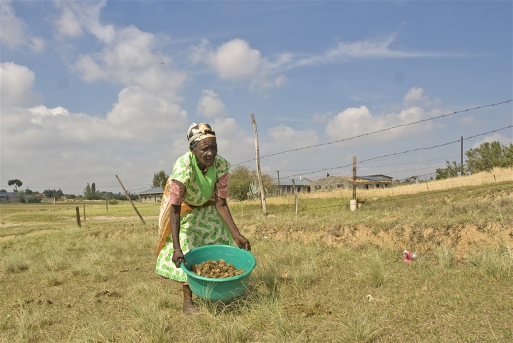 """IRIN - """"Malira Sekho, who is in her 80s, is too old to cultivate her family's patch of land in Ha Makhoatha, near Lesotho's capital, Maseru, and has no one to do it for her. Lesotho's HIV/AIDS epidemic has created a shortage of farm labour and left thousands of children in the care of ailing grandparents like Sekho © Eva-Lotta Jansson/IRIN"""""""