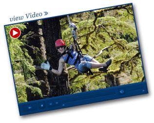Rainforest Canopy & Zipline Expedition – Ketchikan