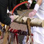 Baumstamm sägen zur Hochzeit