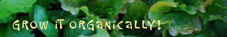 Great site on Organic Gardening