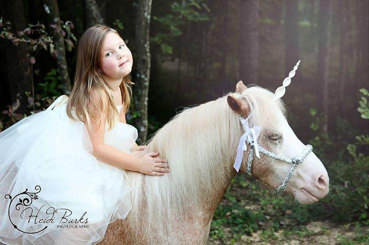 Unicorn Photoshoot Heidi Burks Photography Www